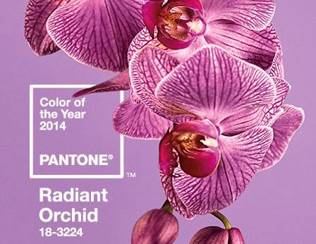 Ragyogó orchidea – 2014-es év pantone színe