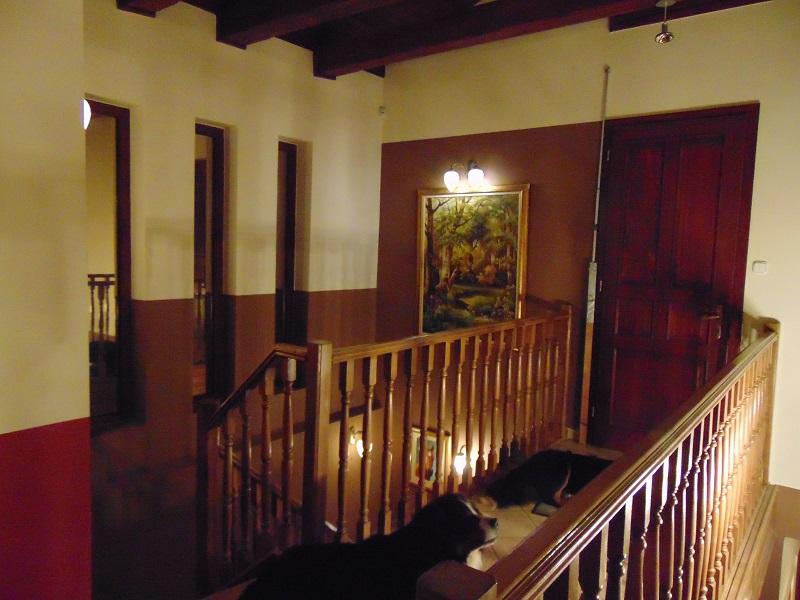 Pest megyei villa lépcső 002