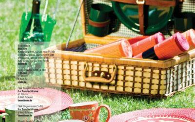 Piknik a Dunakanyarban